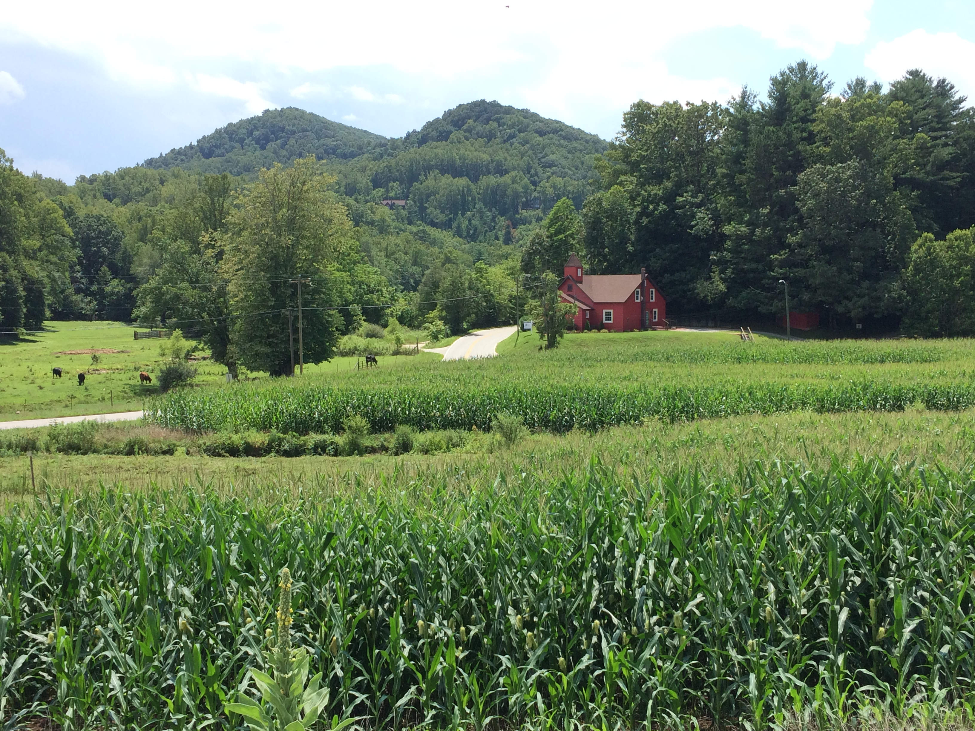 All lots view of farm and old church