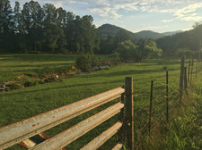 The lower pasture at sunset