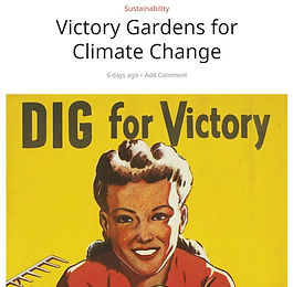 dig for victory.JPG