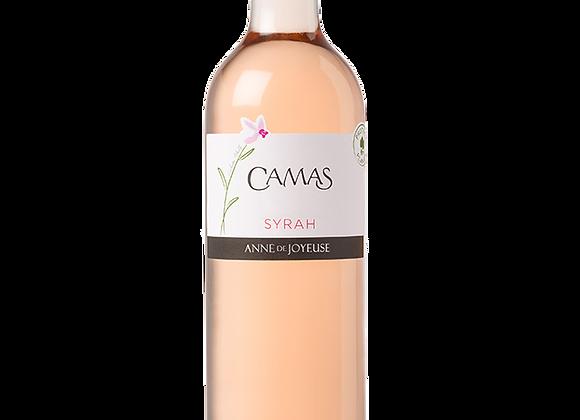 IGP d'Oc Syrah Camas Rosé