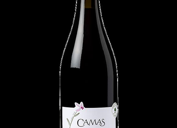 IGP d'Oc Pinot Noir Camas