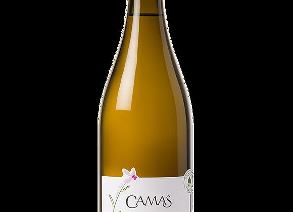 IGP d'Oc Chardonnay Camas