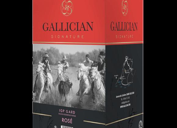 IGP Gard Rosé 5 L - Gallician