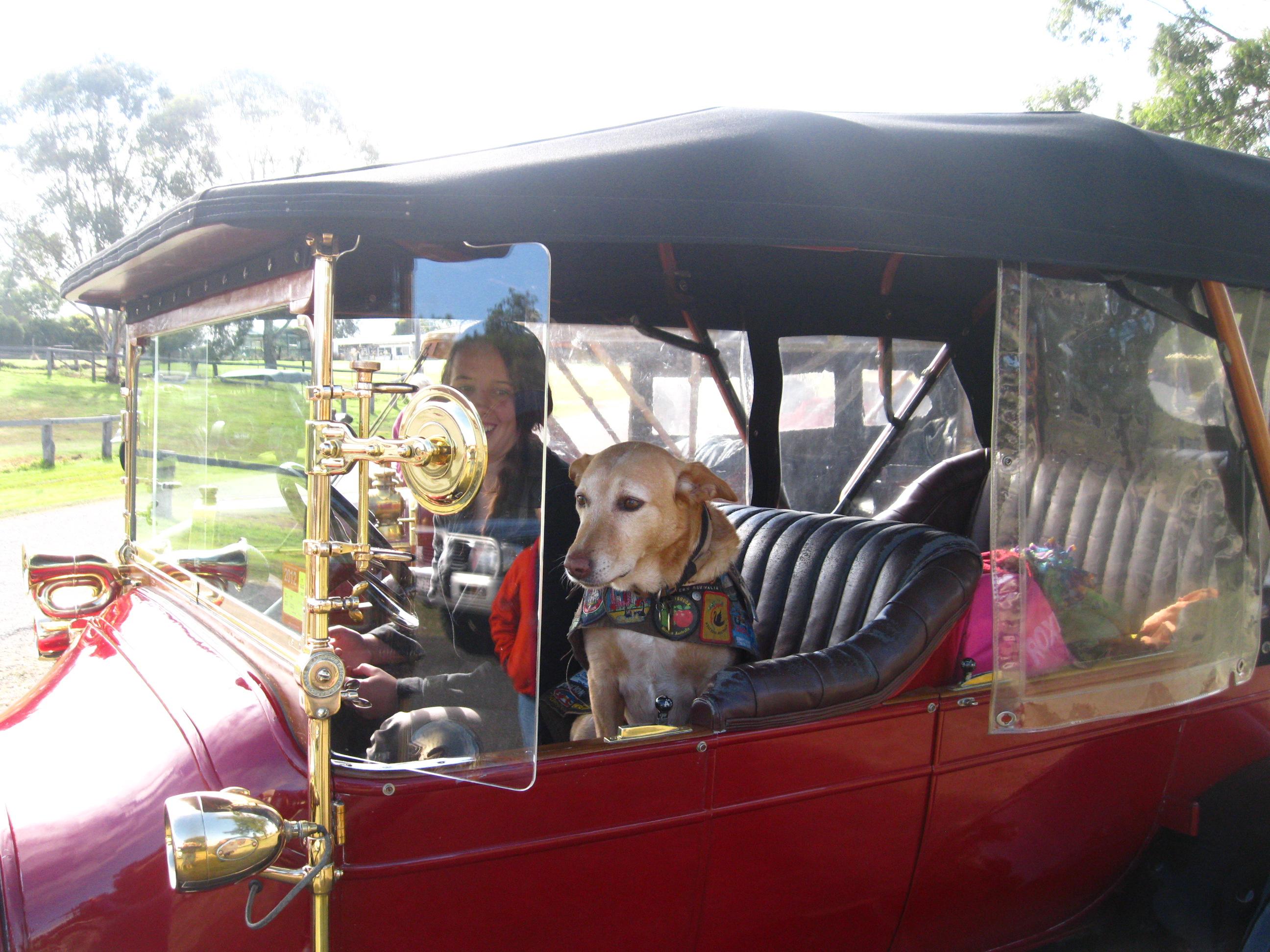 1914 Talbot & Coffee Dog