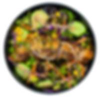 Bowl_pork Salad.jpg