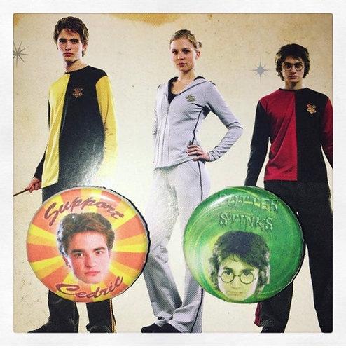 Pins Duo Cedric Potter