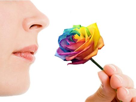 Quelles sont les conséquences de la perte de l'odorat?