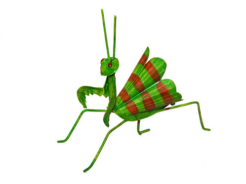 Mantis con alas