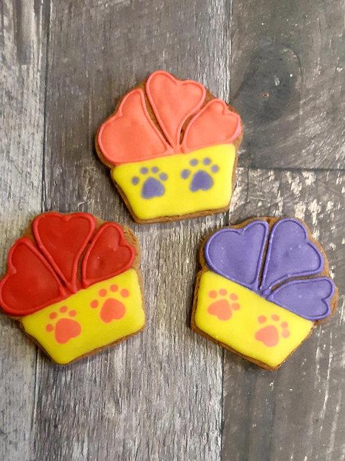3 pack - Cupcake