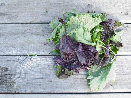 How to use up leftover salad leaves