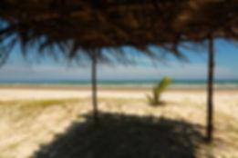 SELF EST praia deserta.jpg