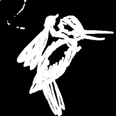 Beija-flor Lilly Hastings