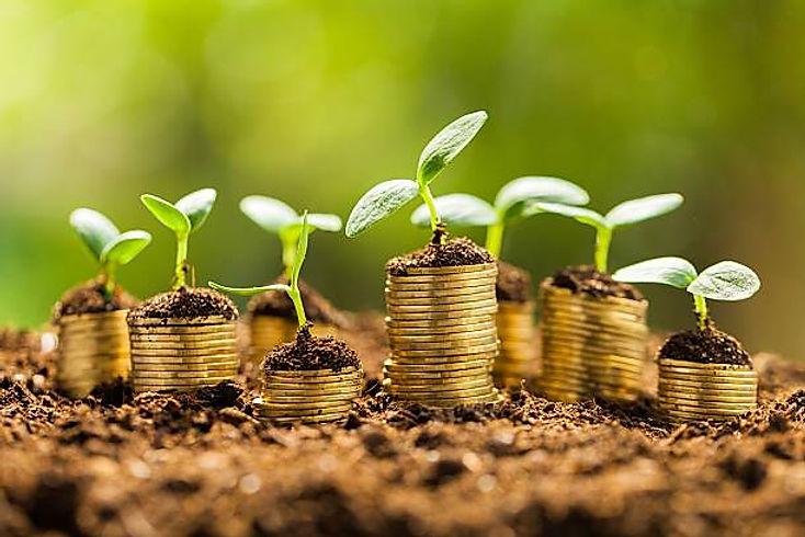 alive-prosperidade-moedas.jpg