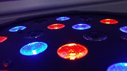 Disco Lights