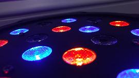 Disco Lichter