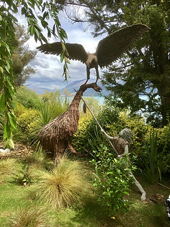 Christchurch Taxi Tours Paradise Lodge