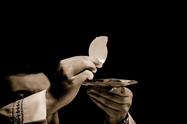 Home Page - Eucharis Pic1.jpg