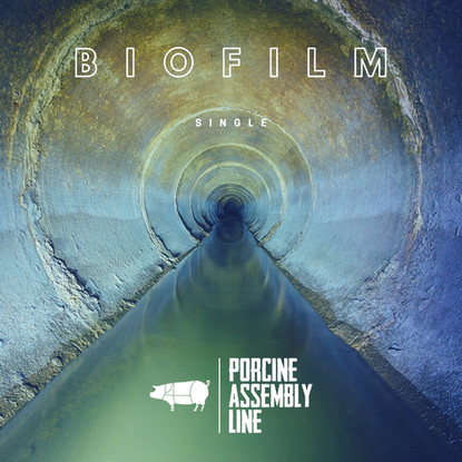 Porcine Assembly Line // Biofilm [Single Review]