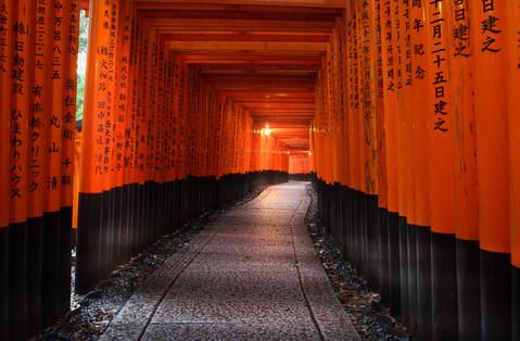 The Path, Japan