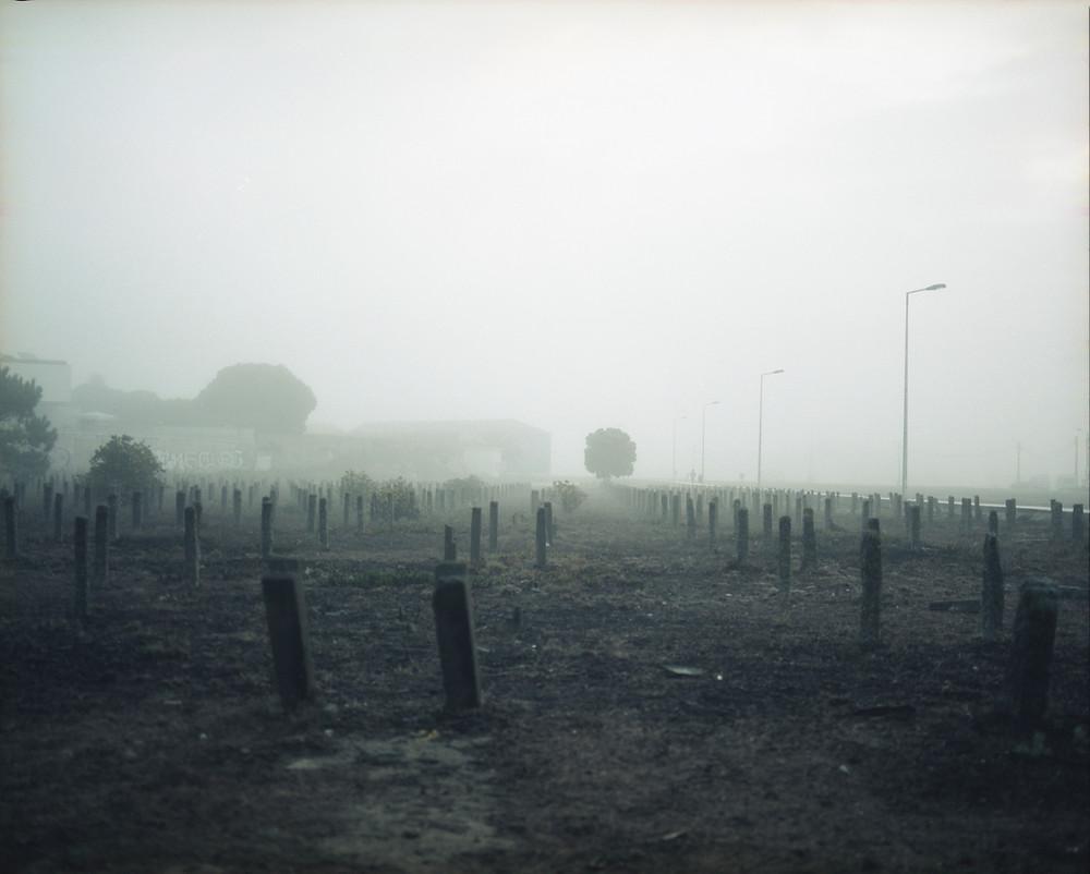 séchoirs à morue dans le brouillard à Vila Do Conde