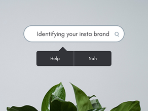 Identifying Your Insta Brand and Growing It!