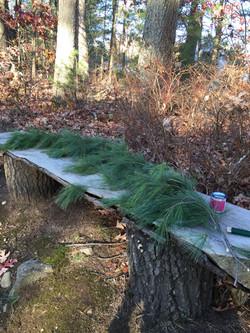 Pine Roping