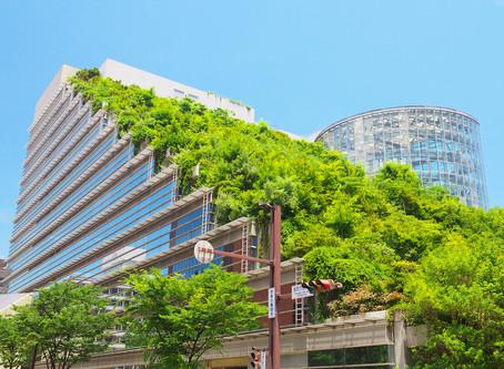Вебинар озеленителей эксплуатируемых крыш