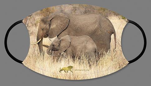 elephant facemask artwork-product .jpg