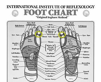 ImmuneBlog_Tonsil_Foot.png