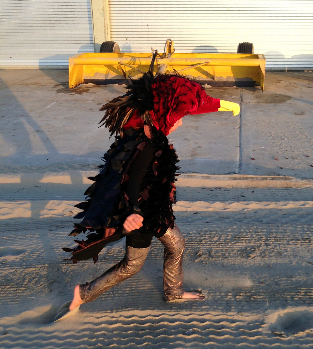Turkey vulture costume