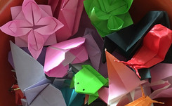 Origami on the Brain!