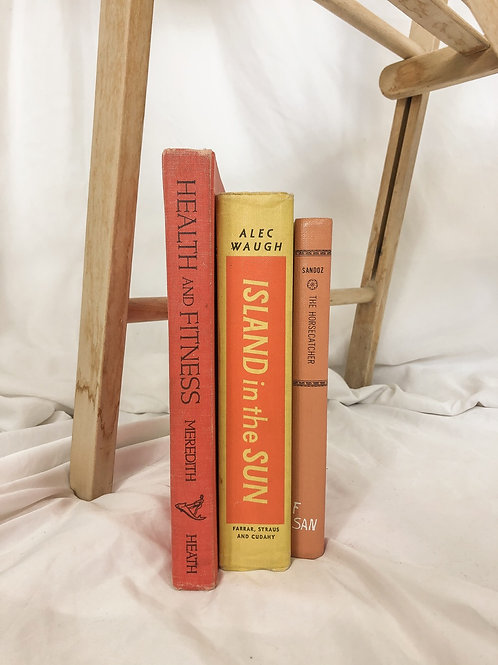 Vintage books-Set of 3