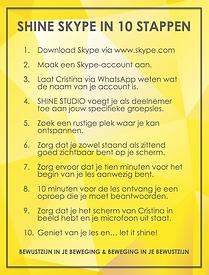 Shine Studio - Shine Skype - Instructie.