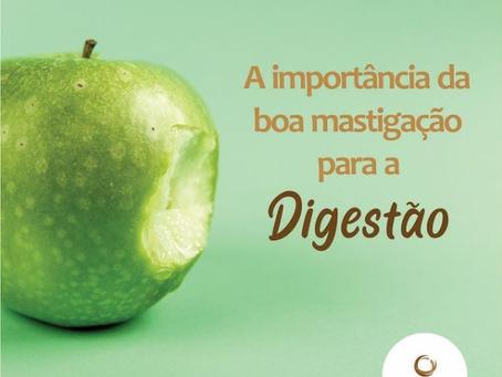 A importância da boa mastigação para a Digestão