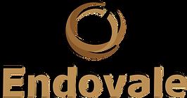 Endovale Logo
