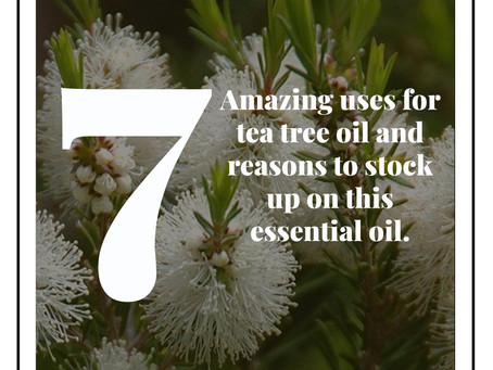 Flower Fun Facts with MassalleyDesign.com: 7 Amazing uses for tea tree oil and reasons to stock up