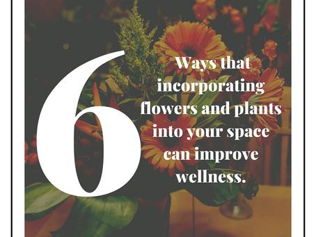 Introducing Flower Fun Facts with MassalleyDesign.com!