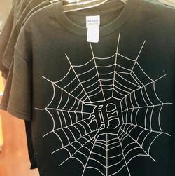 D Spider Web.jpg