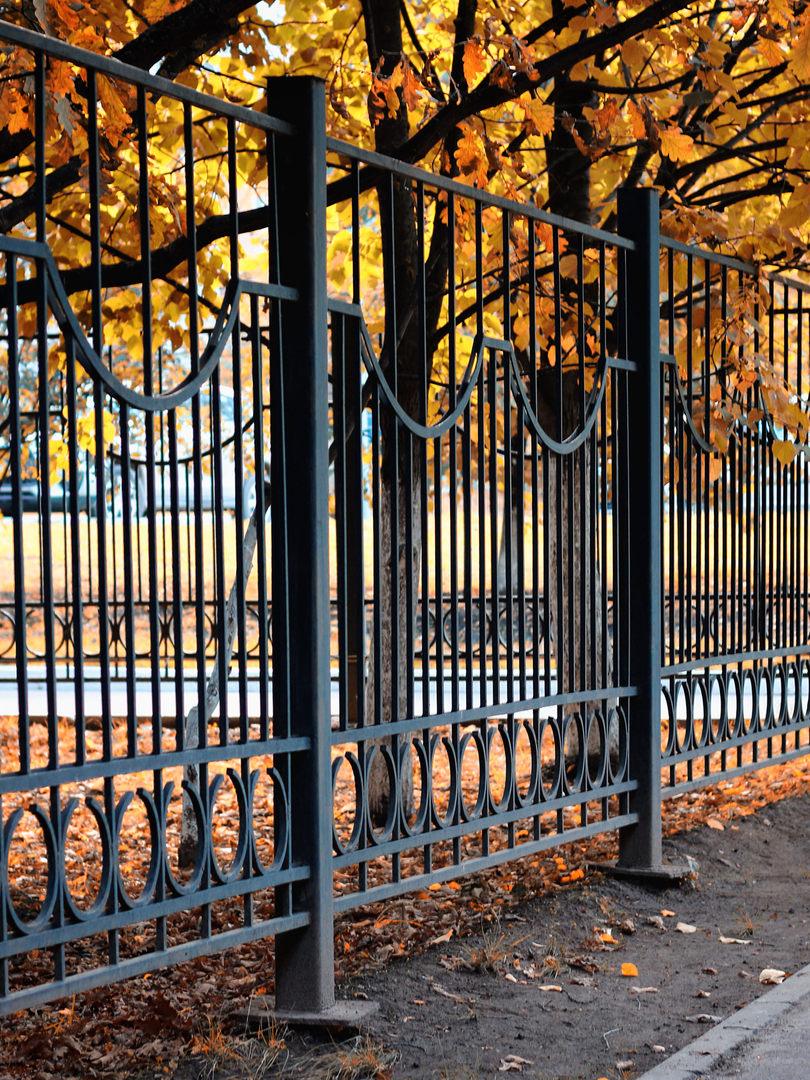 fences.jpeg
