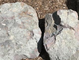 DILEMMA Part 1:                             Between a Rock & A Hard Place
