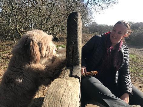 Jenny Harding Dog Walker