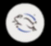 avarelle_web-2018_main(2)-_add-line_02.p