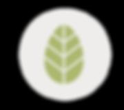 avarelle_web-2018_main(2)-_add-line_01.p