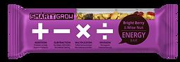Healthy snack bars rich in DHA & antioxidants
