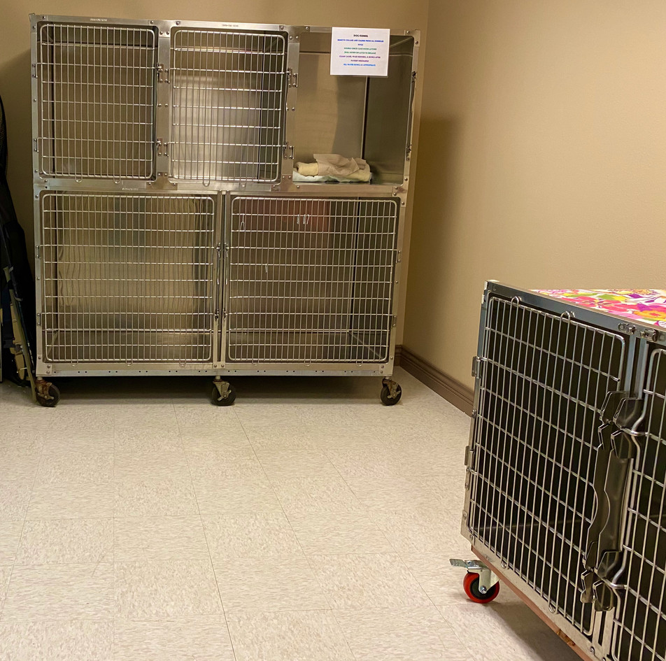 Kennel for dogs.jpeg