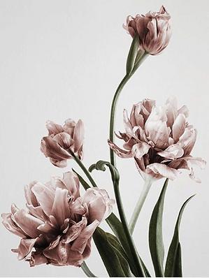 21hdix fleuriste