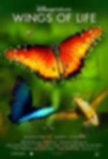 Wings_of_Life_poster.jpg