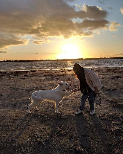 Tarifs Le temps du chien éducateur canin à Béziers