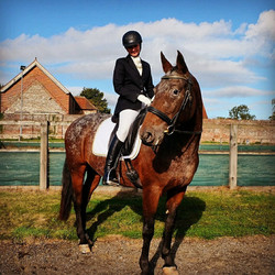 First dressage competition
