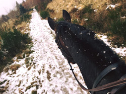 SJ to eventer - braving the weather